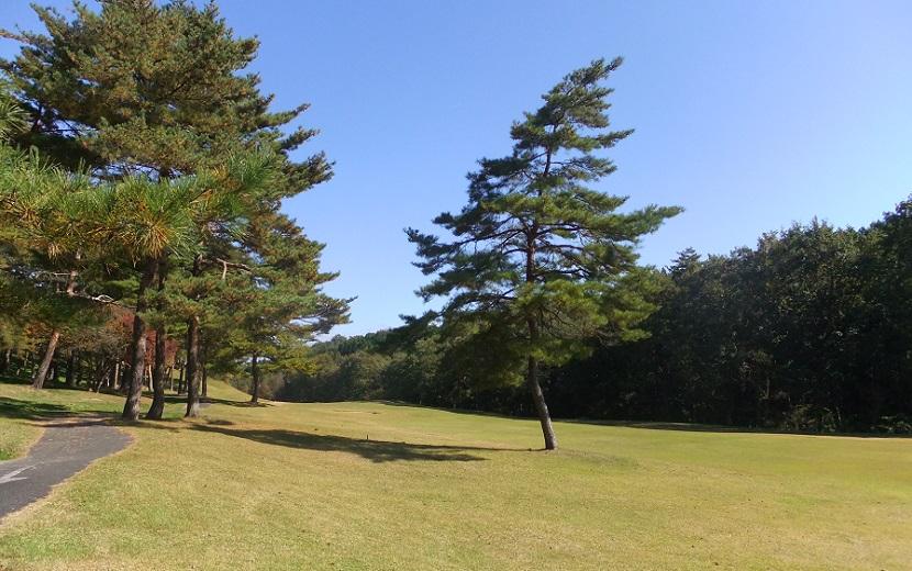 ゴルフの打ち込みのイメージ写真